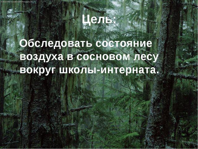Цель: Обследовать состояние воздуха в сосновом лесу вокруг школы-интерната.