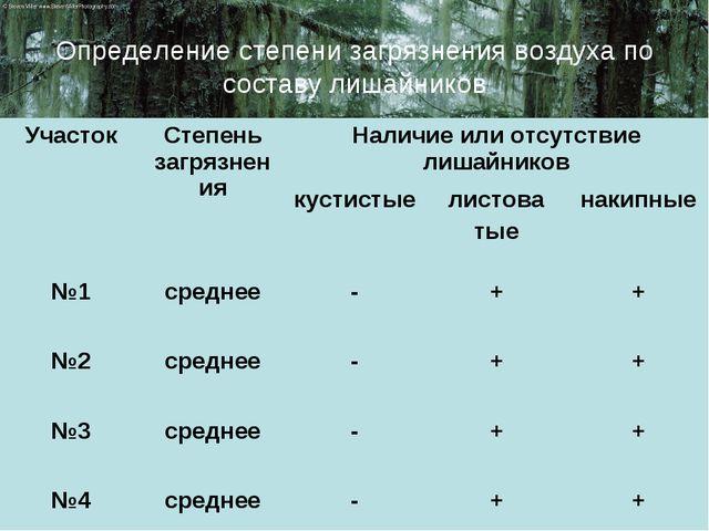 Определение степени загрязнения воздуха по составу лишайников УчастокСтепень...