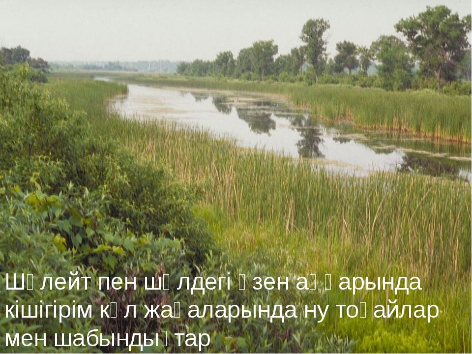 Шөлейт пен шөлдегі өзен аңғарында кішігірім көл жағаларында ну тоғайлар мен ш...