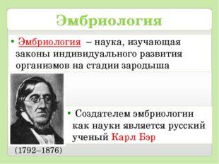 Эмбриология Создателем эмбриологии как науки является русский ученый Карл Бэр