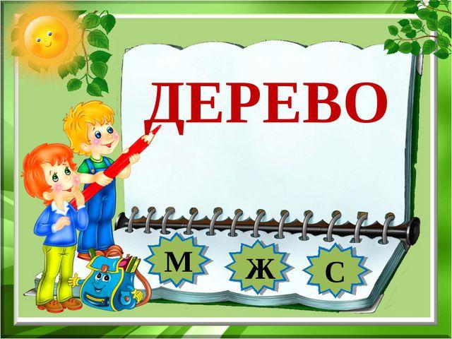 ДЕРЕВО М Ж С