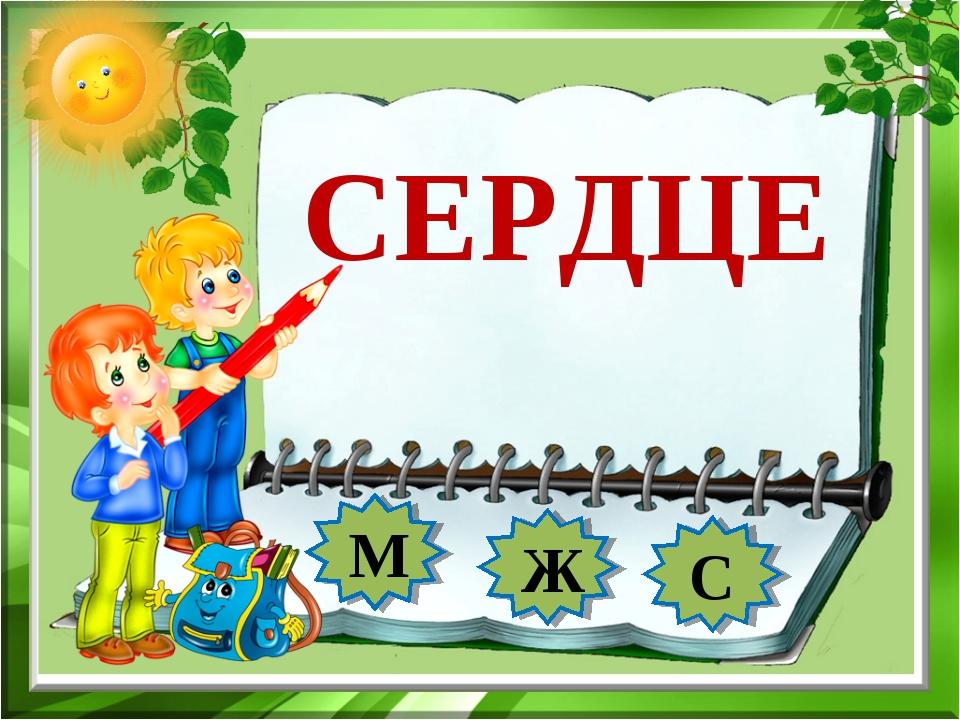 СЕРДЦЕ М Ж С