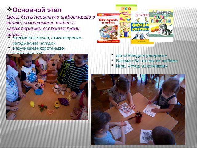 Основной этап Цель: дать первичную информацию о кошке, познакомить детей с ха...