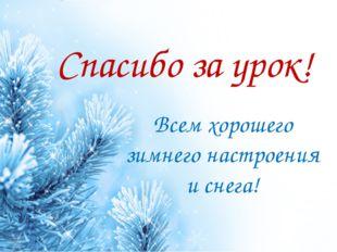 Спасибо за урок! Всем хорошего зимнего настроения и снега! ProPowerPoint.Ru