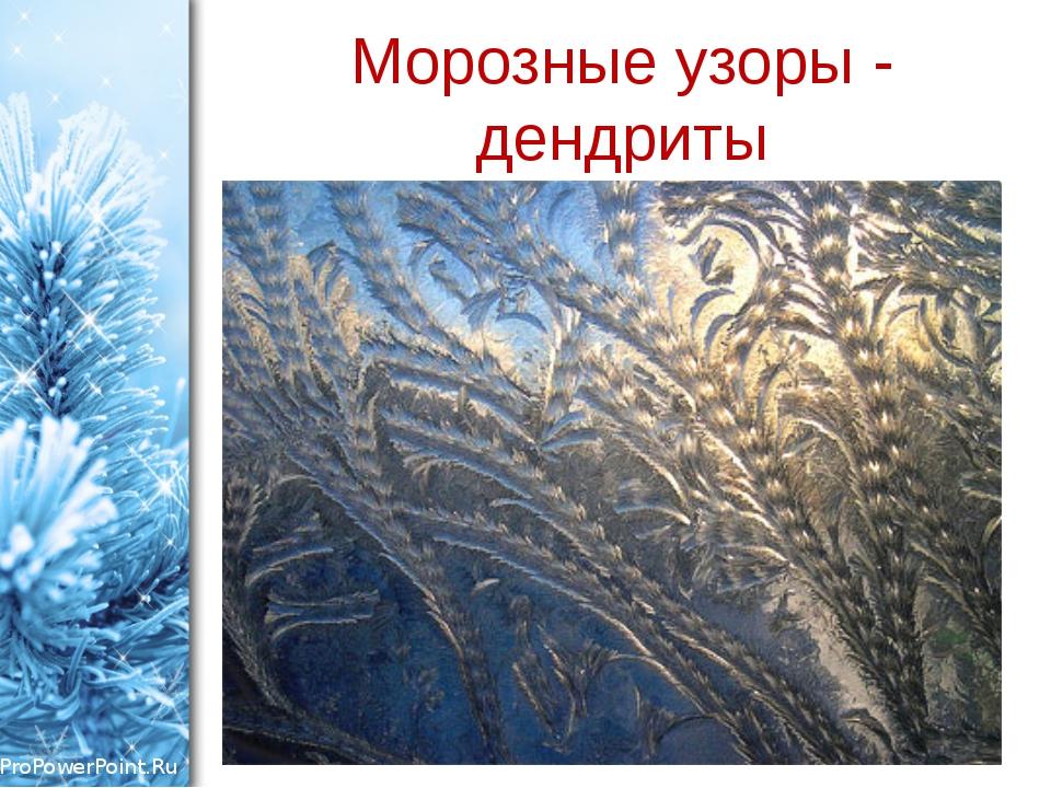 Морозные узоры - дендриты ProPowerPoint.Ru