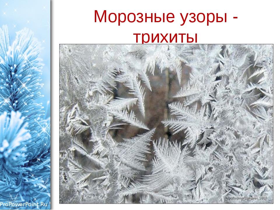 Морозные узоры - трихиты ProPowerPoint.Ru