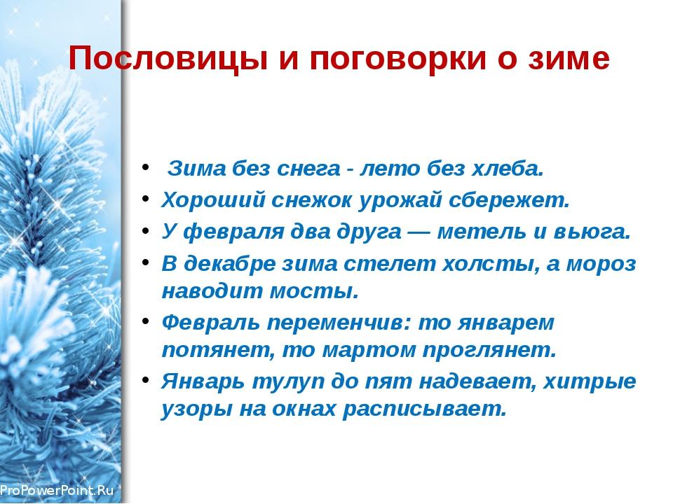 Пословицы и поговорки о зиме Зима без снега - лето без хлеба. Хороший снежок...