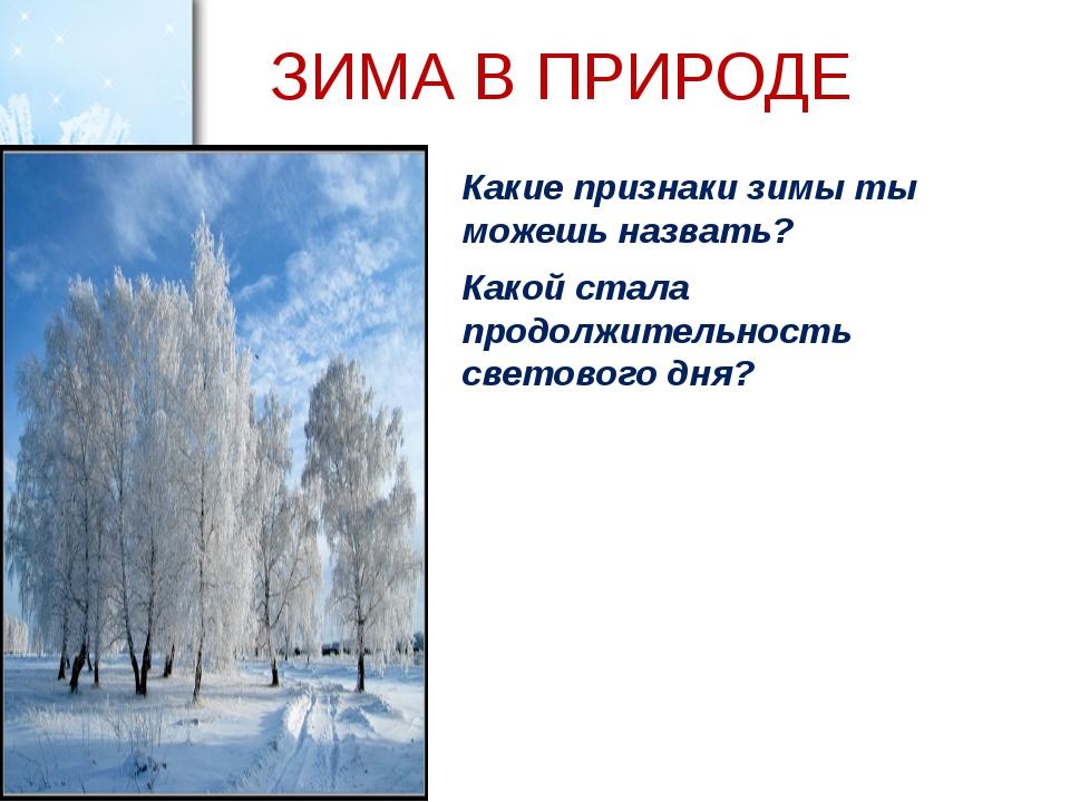 ЗИМА В ПРИРОДЕ Какие признаки зимы ты можешь назвать? Какой стала продолжител...
