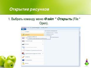 1. Выбрать команду меню Файл * Открыть (File * Open). Открытие рисунков