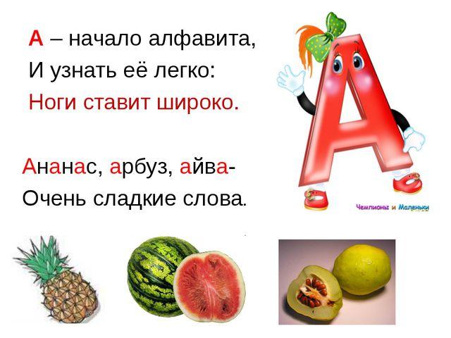 А – начало алфавита, И узнать её легко: Ноги ставит широко. Ананас, арбуз, а...