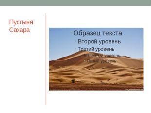 Пустыня Сахара Самая большая в мире пустыня. Находится на севере материка.