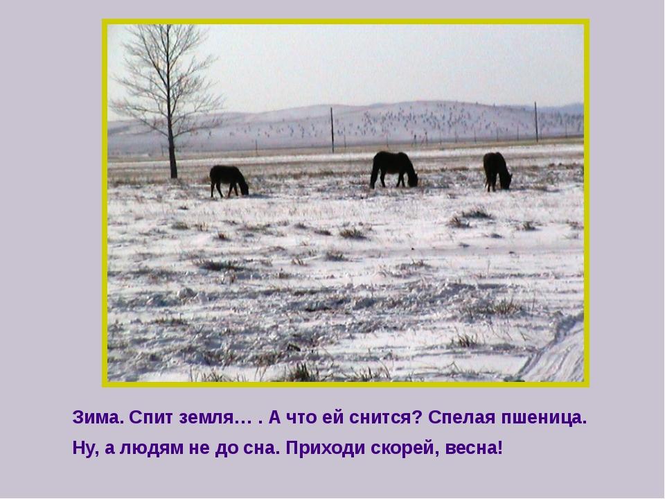 Зима. Спит земля… . А что ей снится? Спелая пшеница. Ну, а людям не до сна....