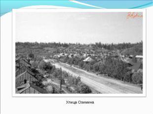 Улица Озимина