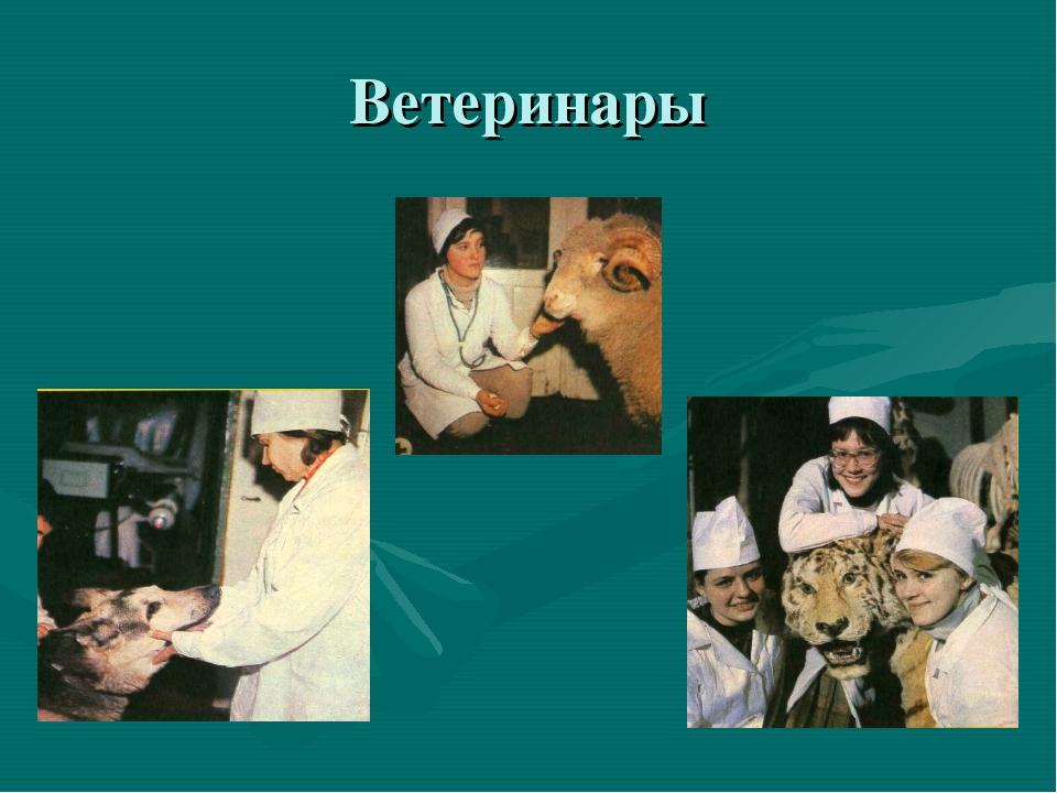 Ветеринары