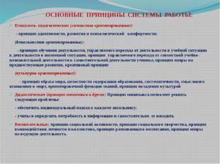 ОСНОВНЫЕ ПРИНЦИПЫ СИСТЕМЫ РАБОТЫ: Психолого- педагогические (личностно ориент