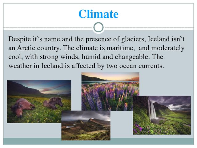 Climate Despite it`s name and the presence of glaciers, Iceland isn`t an Arct...