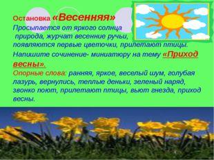 Остановка «Весенняя» Просыпается от яркого солнца природа, журчат весенние р