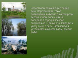 Золоотвалы размещены в пойме реки Партизанская, такое размещение выбрано с у