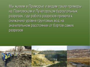 Мы живем в Приморье и видим такие примеры на Павловском и Лучегорском буроуг