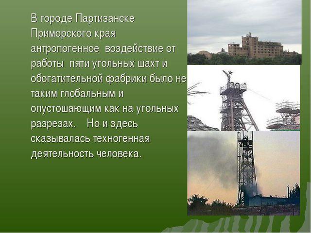 В городе Партизанске Приморского края антропогенное воздействие от работы пя...
