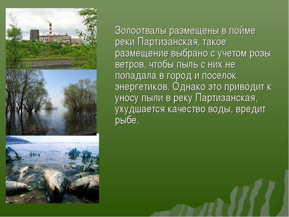 Золоотвалы размещены в пойме реки Партизанская, такое размещение выбрано с у...