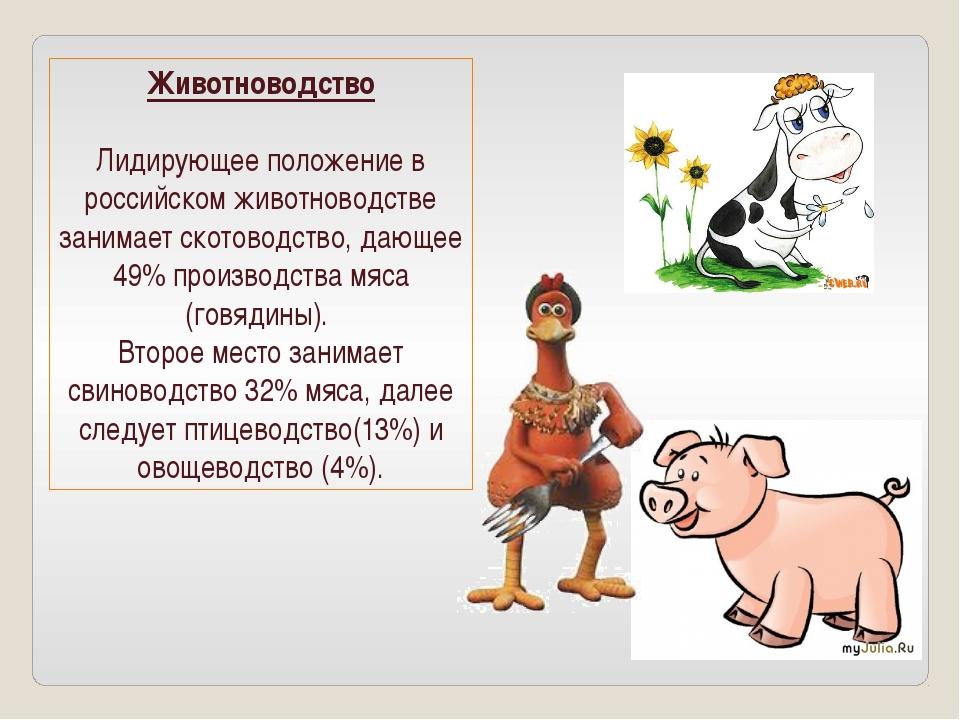 Животноводство Лидирующее положение в российском животноводстве занимает скот...
