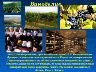 Более одной трети вин, производимых в странах ЕС, изготовлены во Франции, кот