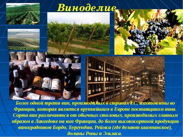 Более одной трети вин, производимых в странах ЕС, изготовлены во Франции, кот...