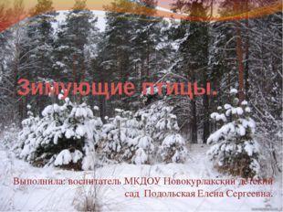 Зимующие птицы. Выполнила: воспитатель МКДОУ Новокурлакский детский сад Подол
