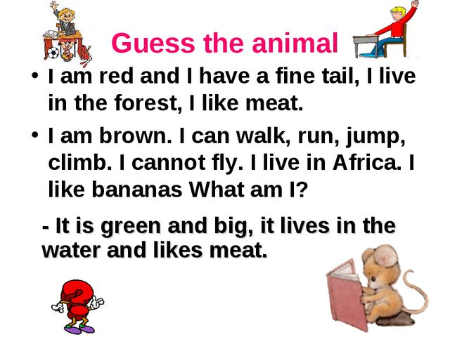 Guess the animal I am red and I have a fine tail, I live in the forest, I lik...