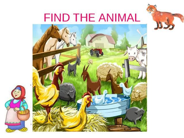 FIND THE ANIMAL