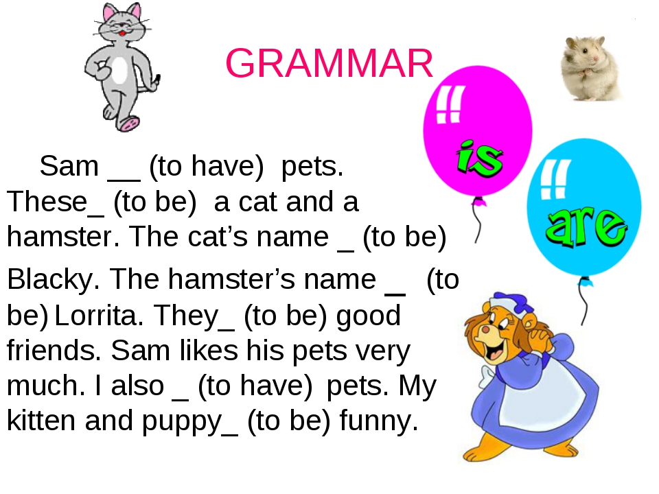 GRAMMAR Sam __ (to have) pets. These_ (to be) a cat and a hamster. The cat's...