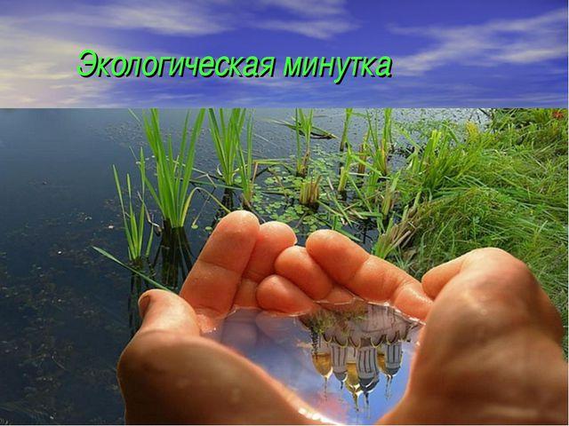 Экологическая минутка