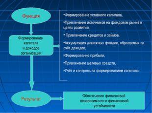 Функция Результат Формирование капитала и доходов организации Формирование ус