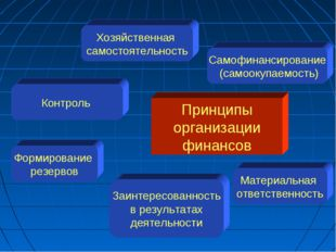 Принципы организации финансов Хозяйственная самостоятельность Самофинансирова
