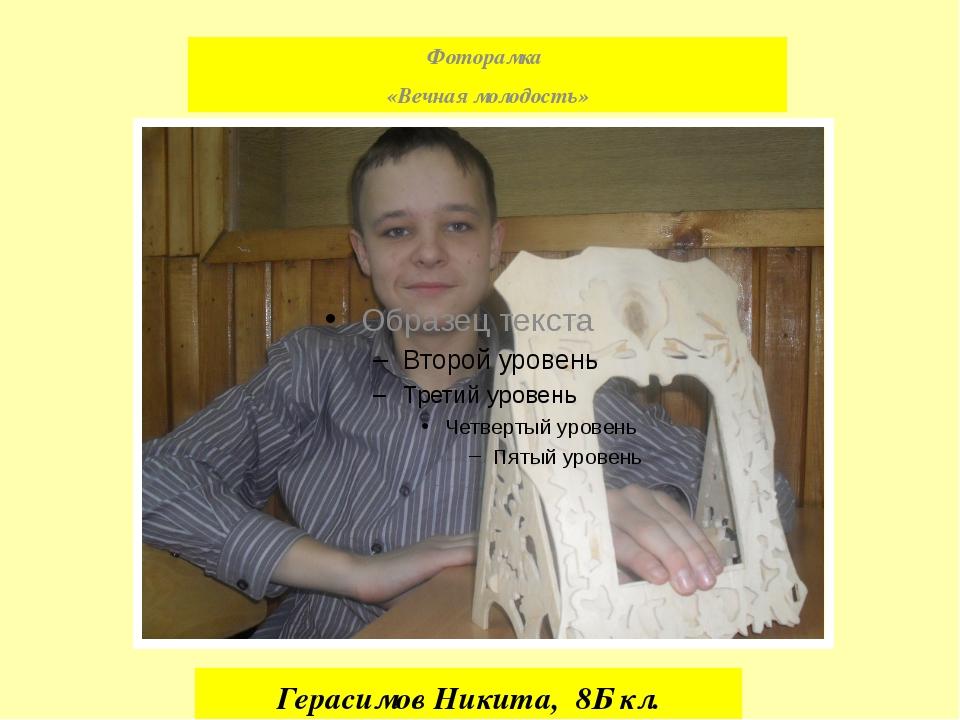 Герасимов Никита, 8Б кл. Фоторамка «Вечная молодость»
