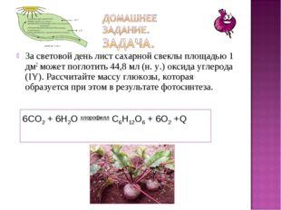 За световой день лист сахарной свеклы площадью 1 дм2 может поглотить 44,8 мл