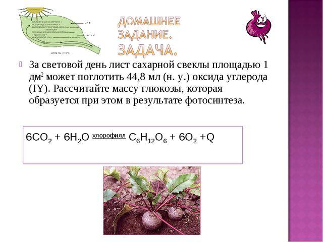 За световой день лист сахарной свеклы площадью 1 дм2 может поглотить 44,8 мл...
