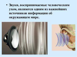 Звуки, воспринимаемые человеческим ухом, являются одним из важнейших источник