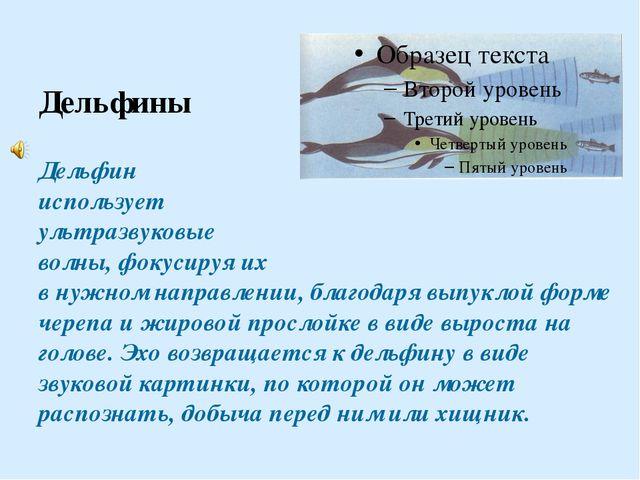 Дельфины Дельфин использует ультразвуковые волны, фокусируя их в нужном напр...