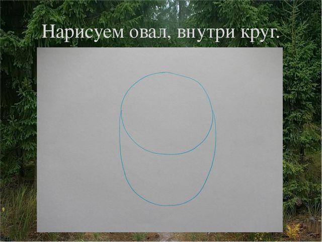 Нарисуем овал, внутри круг.