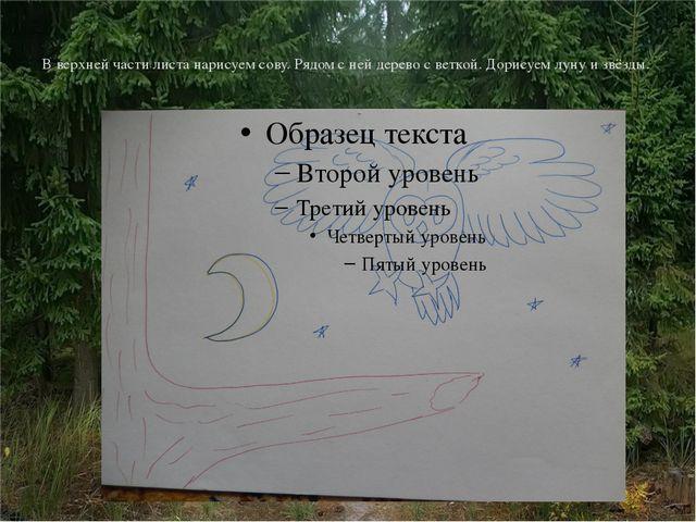 В верхней части листа нарисуем сову. Рядом с ней дерево с веткой. Дорисуем лу...