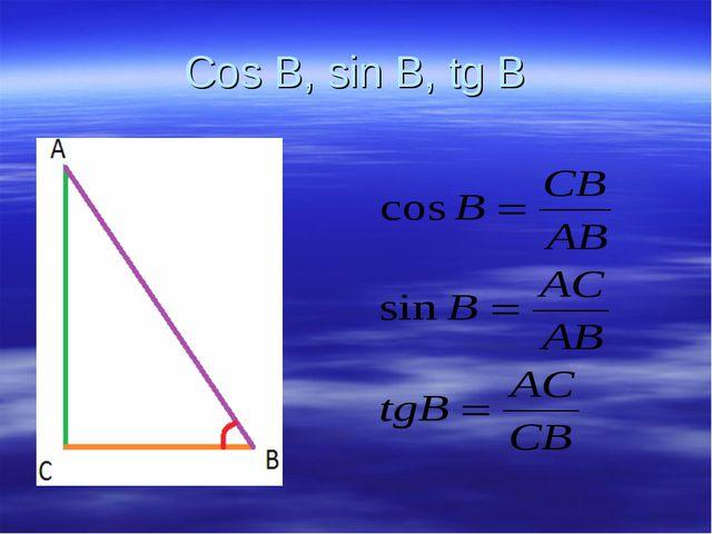 Cos B, sin B, tg B