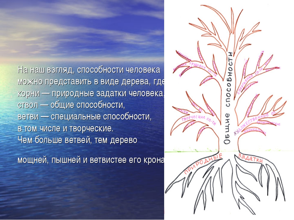 Нанаш взгляд, способности человека можно представить ввиде дерева, где корн...