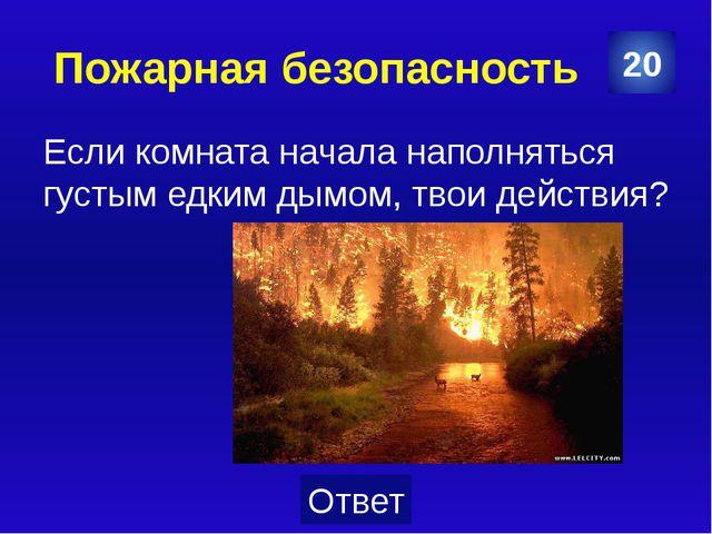 Пожарная безопасность Как зовется мифологическая птица, обладающая способност...