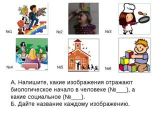 А. Напишите, какие изображения отражают биологическое начало в человеке (№___