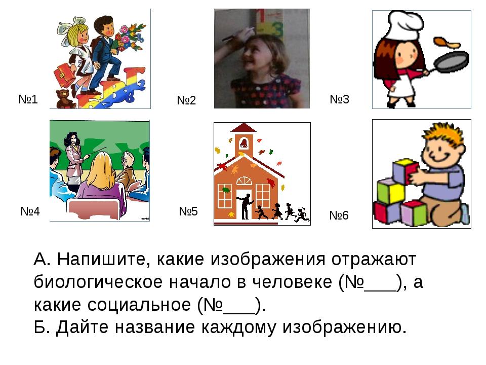 А. Напишите, какие изображения отражают биологическое начало в человеке (№___...