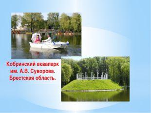 Кобринский аквапарк им. А.В. Суворова. Брестская область.