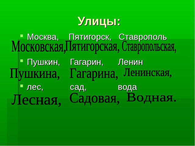Улицы: Москва, Пятигорск, Ставрополь Пушкин, Гагарин, Ленин лес, сад, вода