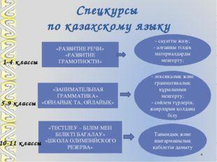 Спецкурсы по казахскому языку «РАЗВИТИЕ РЕЧИ» «РАЗВИТИЕ ГРАМОТНОСТИ» «ЗАНИМАТ